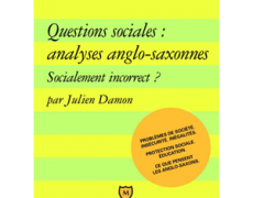 Questions sociales : analyses anglo-saxonnes. Socialement incorrect ?, Presses Universitaires de France, coll. « Major », 2009.